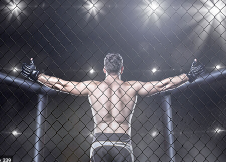MMA zakłady