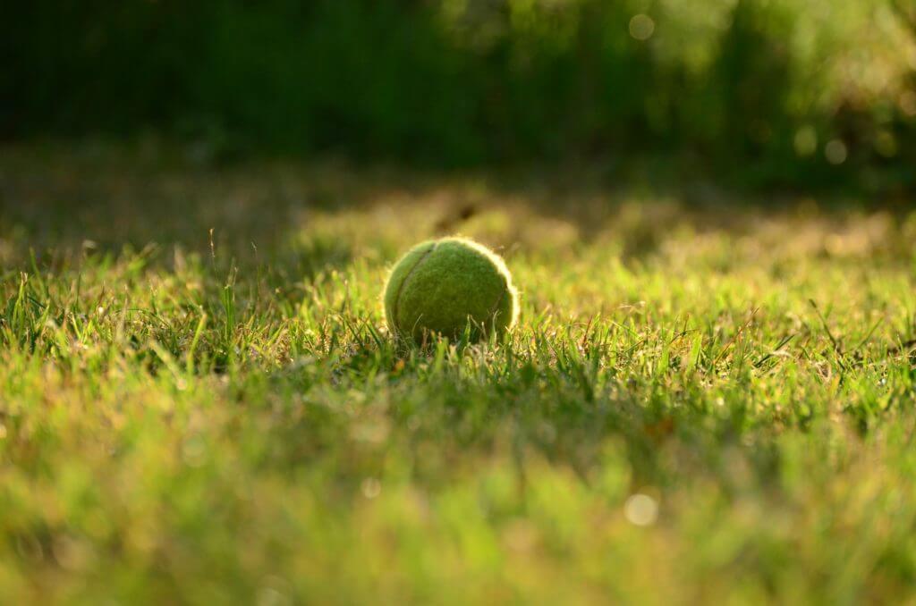 Iga Świątek Wimbledon